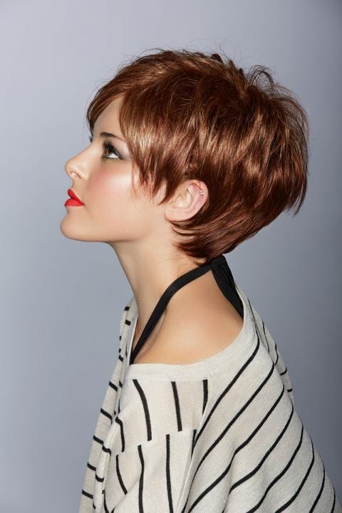 Short Hair Style Board